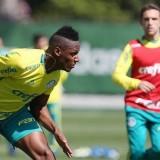 Visando duelo com o Sport, Palmeiras faz treino tático na Academia