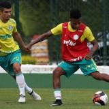 Eduardo Baptista esboça Verdão em treino tático na Academia de Futebol