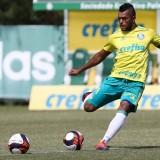 Atacante Borja é a novidade do Palmeiras para pegar Ferroviária