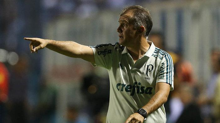 Baptista gostou do comportamento alviverde diante dos argentinos. (Cesar Greco/Ag.Palmeiras/Divulgação)