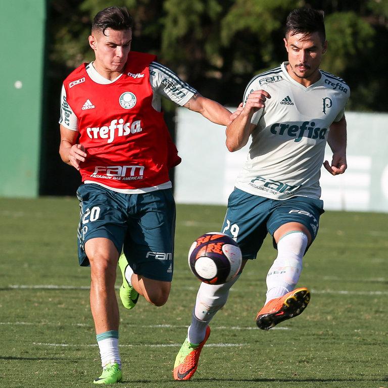 Autor do gol da vitória sobre o Santos, Willian deve ser titular diante do Mirassol. (Cesar Greco/Ag. Palmeiras/Divulgação)
