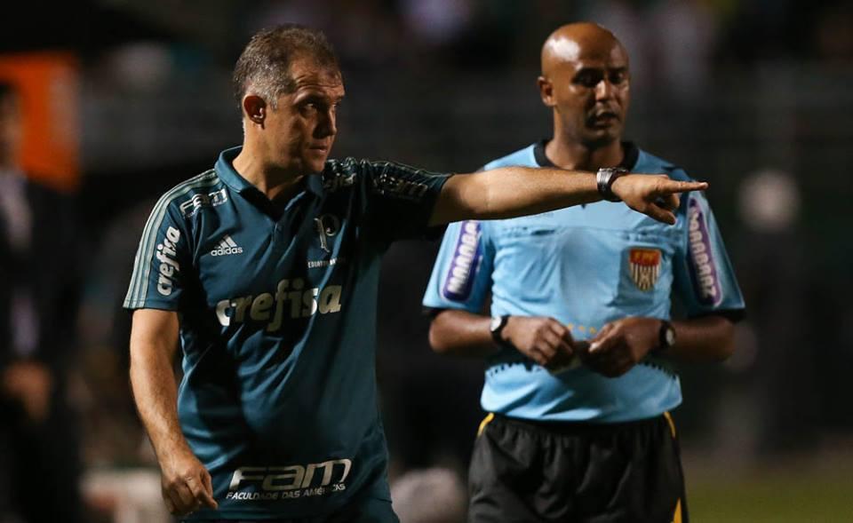 Eduardo Baptista comemorou a classificação e elogiou o grupo. (Cesar Greco/Ag Palmeiras/Divulgação)