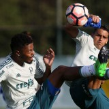 No Uruguai, Palmeiras faz último treino antes enfrentar o Peñarol